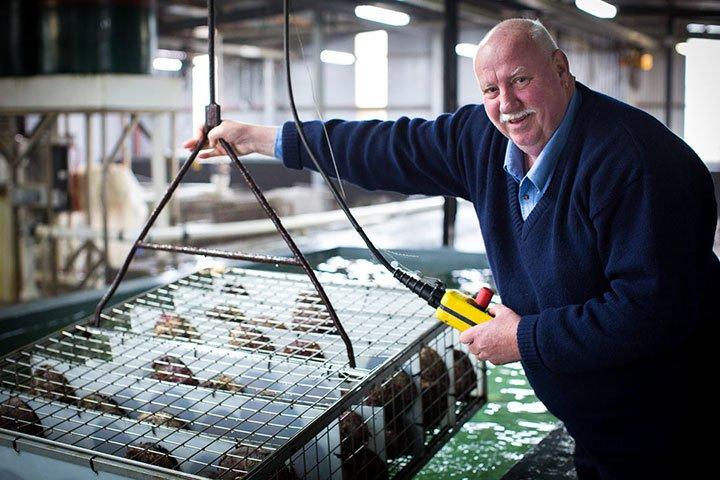 tasmanian-seafood-group-australian-seafood-export